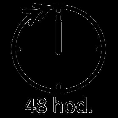 Půjčovna čističů koberců na 48 hodin